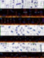 2-5_makingof_3.jpg