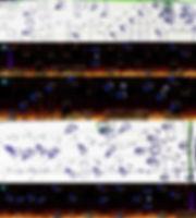 2-5_makingof_1.jpg