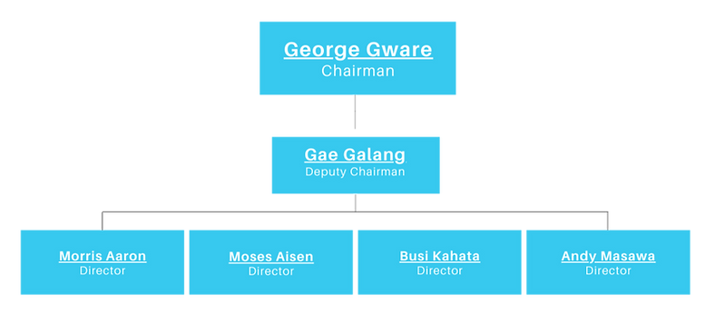 Blue and White Organization Charts Prese