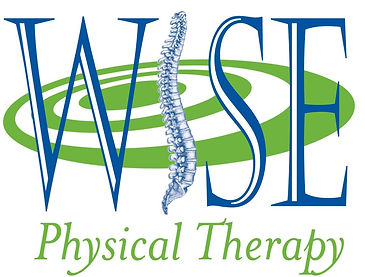 wise physical therapy logo