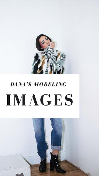 Dana Print Portfolio (2).PNG