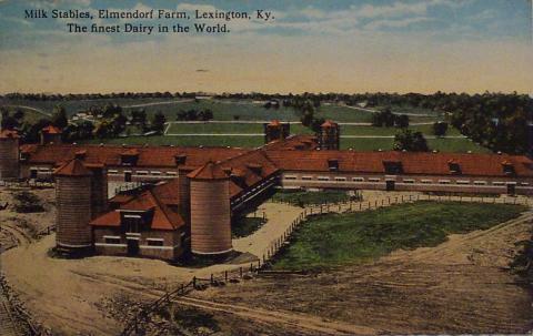 Elmendorf - Dairy #1.jpg