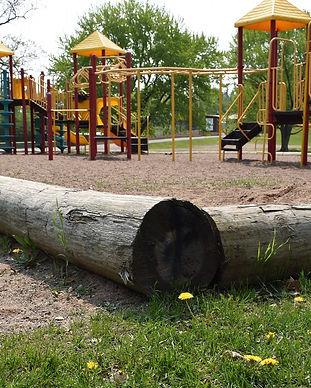 andersonpark_edited.jpg