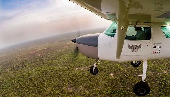 elephants, aircraft, anti-poaching,wings for conservation, aerial support, africa