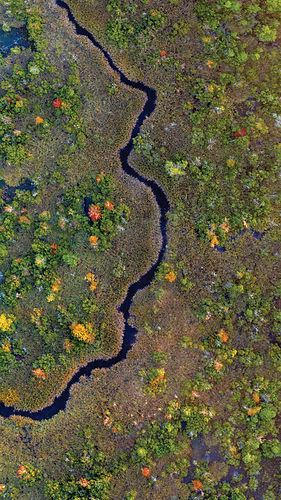 Ben drone marsh F20.jpg