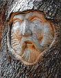 TreeSpirit.1.jpg