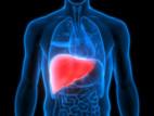 Hepatites virais: grave problema de saúde pública