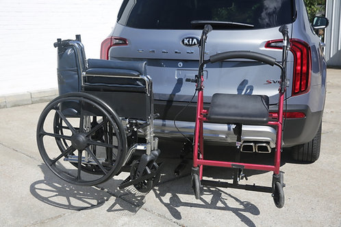 Steady Double Carrier with Wheel Chair Option