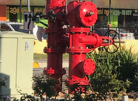 In the city of San Diego there are approximately 21,000 backflow devices.