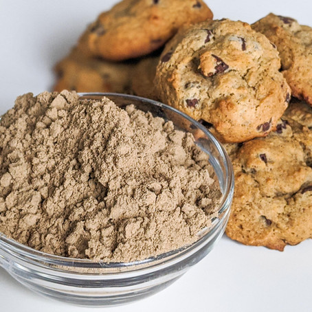 Cricket Protein: 3 Reasons Why Acheta is the Superfood Protein of the Future