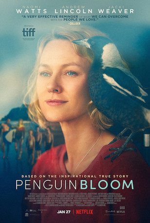 "Review: ""Penguin Bloom"""