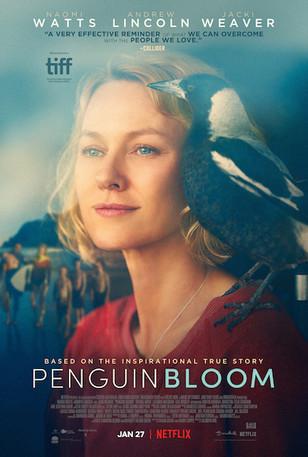 "Review: ""Penguin Bloom"""
