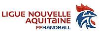 Handball aquitaine.jpg