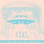 OSNI_edited_edited.jpg