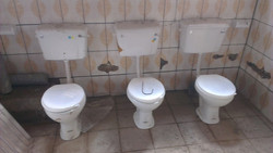 down toilettes.JPG
