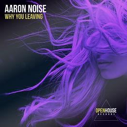 Aaron Noise - Why You Leaving.jpg