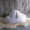 Thumbnail: Cloud One
