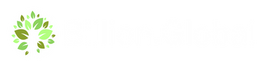 Bg Logo White without Tagline_300x.png