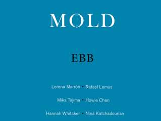 MOLD: EBB has arrived!!