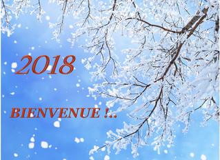 Éclairer ses Intentions pour 2018 grâce au Jardin