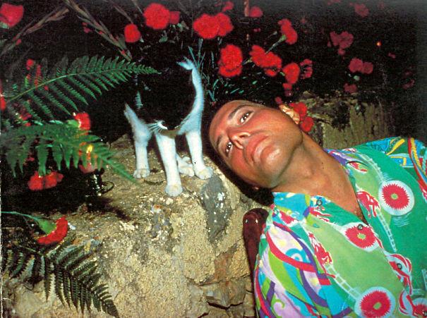A história do amor de Freddie Mercury pelos seus gatos em 20 fotografias