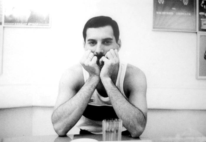 Quem é Freddie Mercury para vocês?