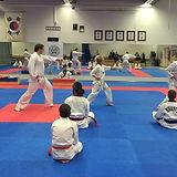 taekwondo_ketill_mai2014.JPG