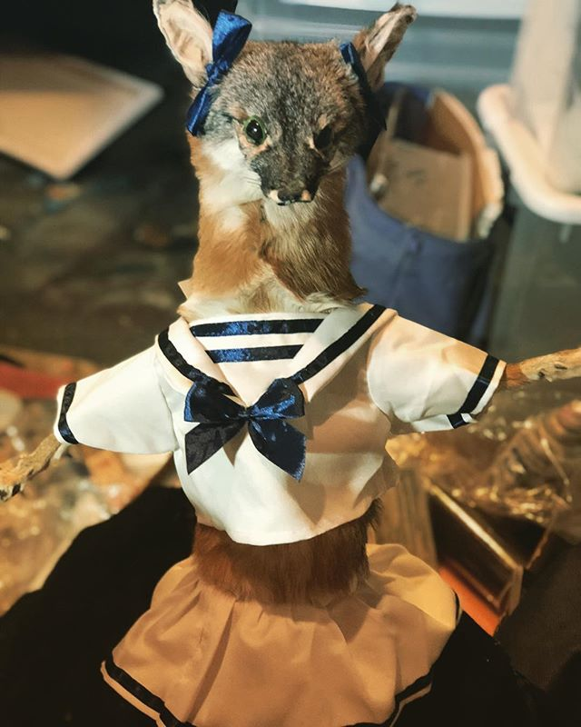 Ready for #Halloween with a #sailor #cos
