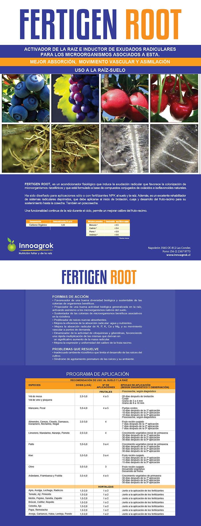 FT Fertigen Root.jpg