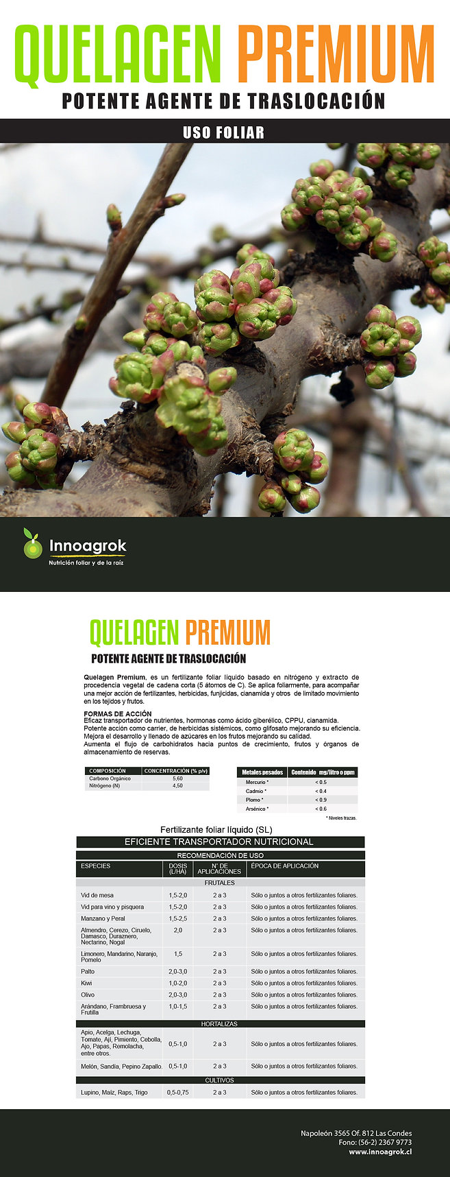 FT Quelagen Premium.jpg