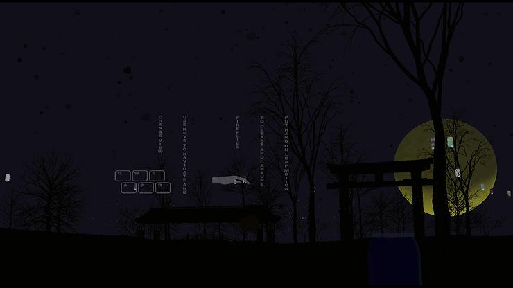 firefly forest 02.jpg