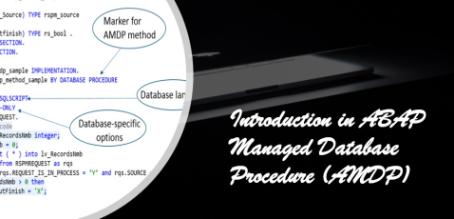 SAP HANA System performance optimization with AMDP