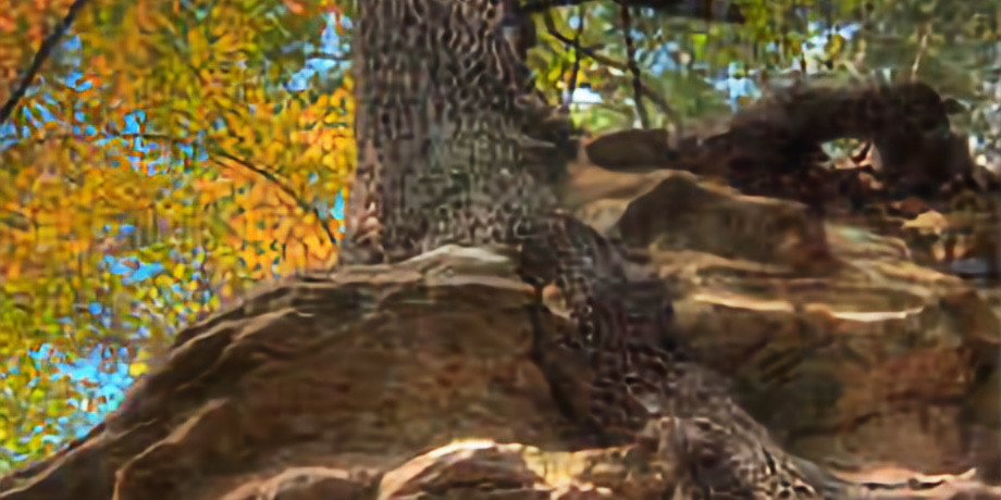 Oklahoma - Lake McMurtry Red Trail (Bring Your Friends And Family)