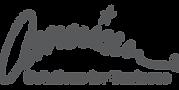 American-Logo-Grey.png