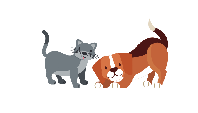 Pets and our mental wellness