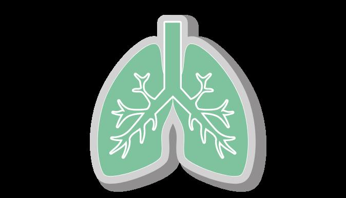 Breathwork in Mindfulness