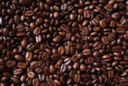 beans_1400x.jpg