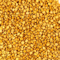 Yellow-Split-or-Crushed-dried-peas.jpg
