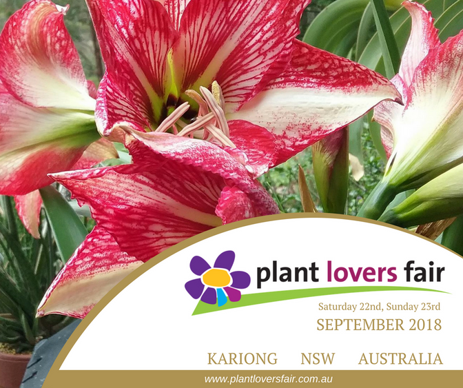 Plant Lovers Fair 2018