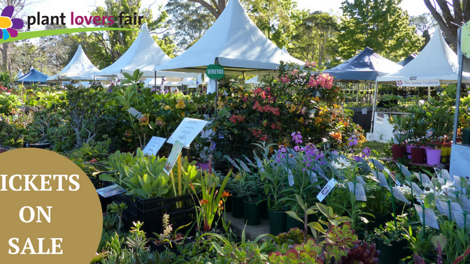 Plant Lovers Fair 2019 is coming!