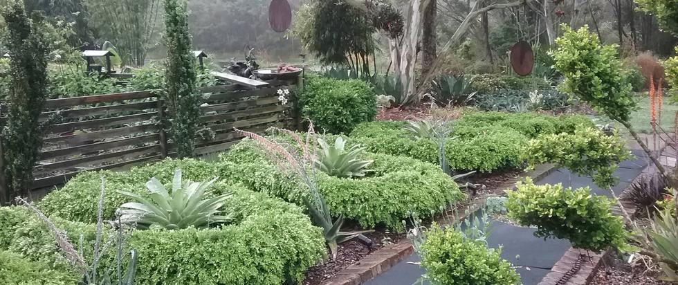 Living Edge nurdery and garden