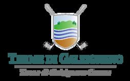 Logo Terme.png