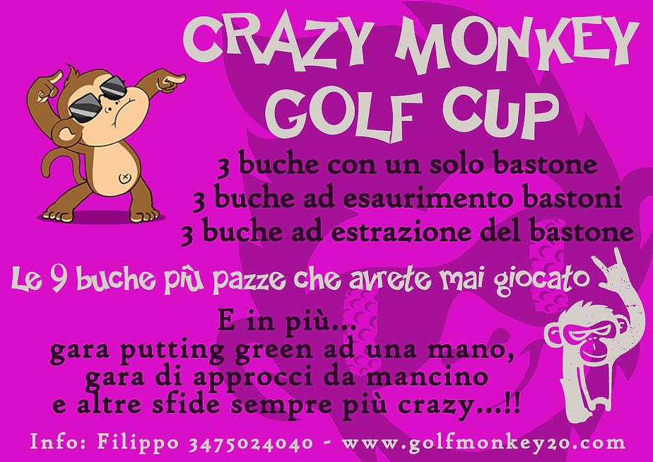 Locandina Crazy Monkey.png