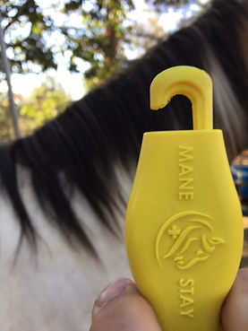 ManeStay horse mule equine ID identifcation tool evacuation rescue