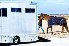 Horse transportation van , equestrian s