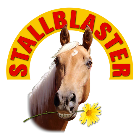 Stallblaster Logo 2 Final.png