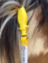 ManeStay horse mule equine ID identifcation tool evacuation rescue