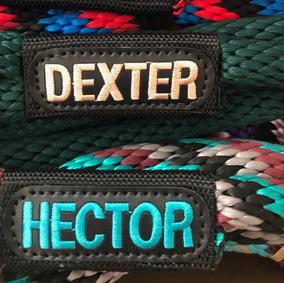 Harmony Gus Dexter Hector BLOCK.jpg