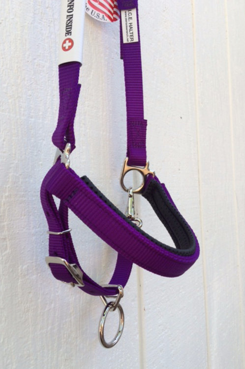 I.C.E. Trail Halter Large Horse Size PURPLE