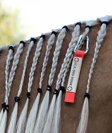 braid ID into mane securely for the natural disaster season camping highlining riding